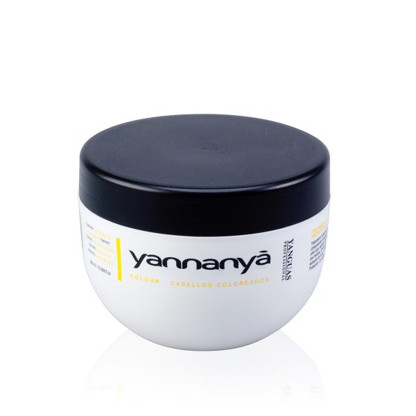 Mascarilla Protectora Del Color - 300 Ml - Yanguas Professional